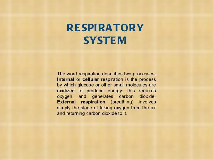 RESPIRATORY SYSTEM The word respiration describes two processes.  Internal  or  cellular  respiration is the process by wh...