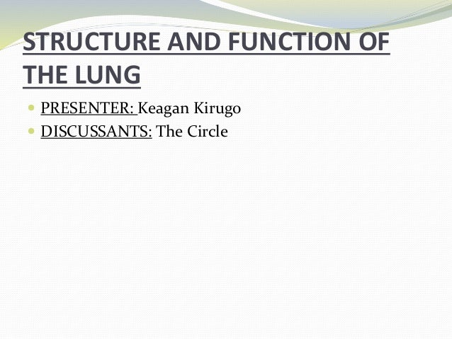 Structure and Function of the Lung Slide 2