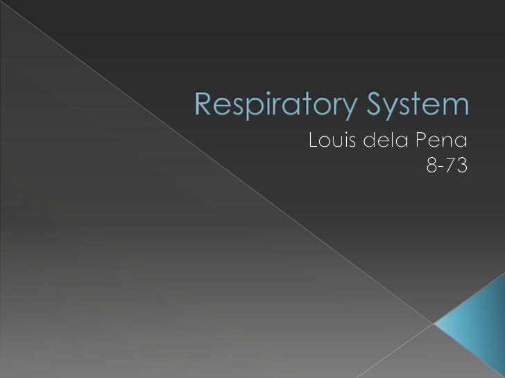 Respiratory System<br />Louis dela Pena<br />8-73<br />