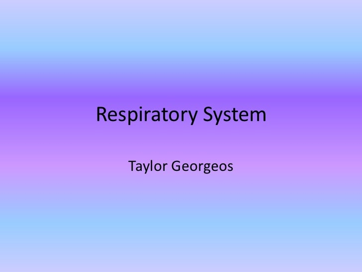 Respiratory System<br />Taylor Georgeos<br />