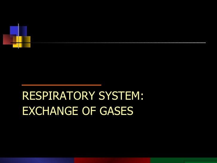 Copyright © 2003 Pearson Education, Inc. publishing as Benjamin Cummings. RESPIRATORY SYSTEM: EXCHANGE OF GASES PowerPoint...