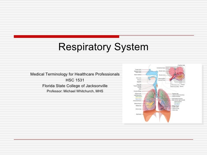 Respiratory SystemMedical Terminology for Healthcare Professionals                   HSC 1531      Florida State College o...