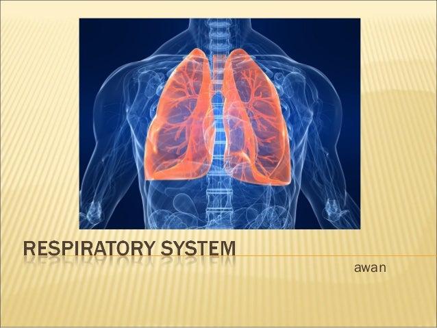 Grade 8 respiratory system ccuart Images