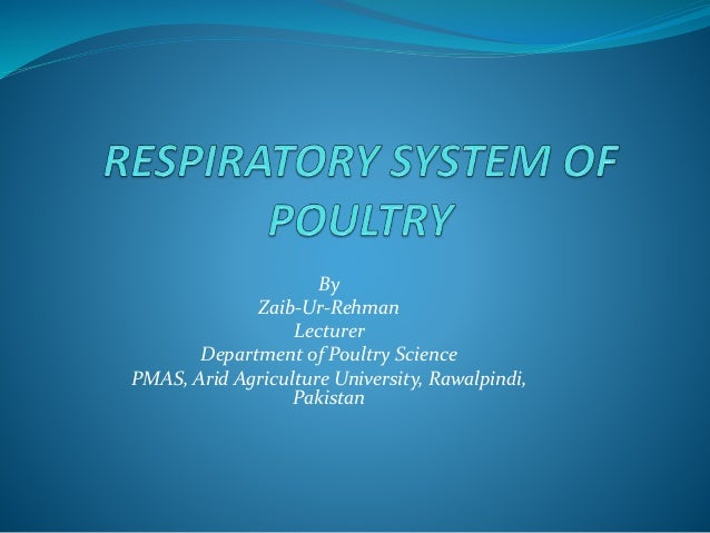 By Zaib-Ur-Rehman Lecturer Department of Poultry Science PMAS, Arid Agriculture University, Rawalpindi, Pakistan