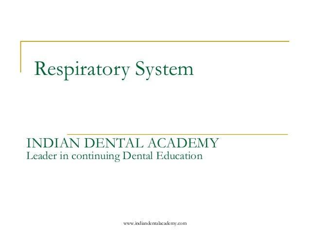 respiration coursework