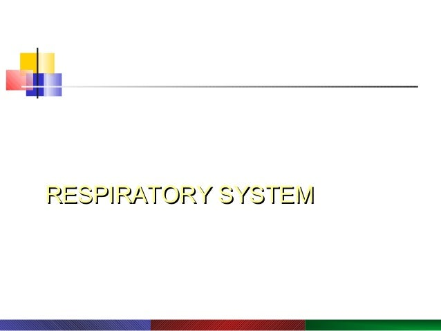 PowerPoint® Lecture Slide Presentation by Robert J. Sullivan, Marist College  Human Biology  RESPIRATORY SYSTEM  Copyright...