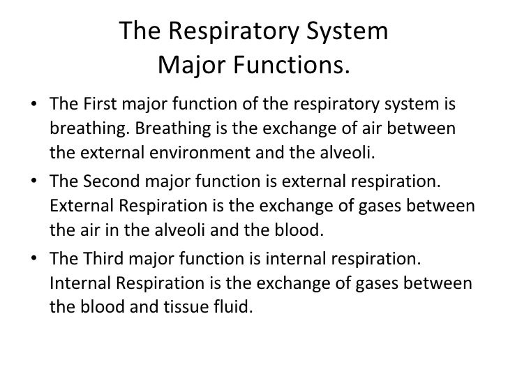 ... 2. The Respiratory System Major Functions.