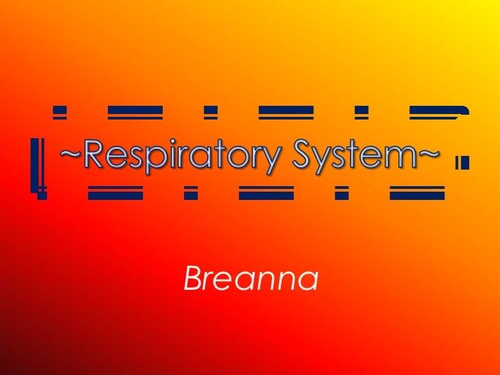 Respiratoryanatomy Power Point: Respiratory System Powerpoint