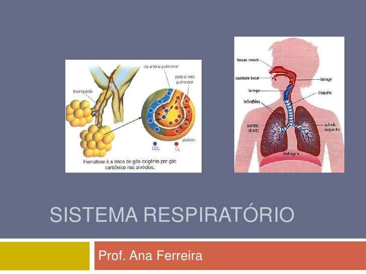 SISTEMA RESPIRATÓRIO    Prof. Ana Ferreira