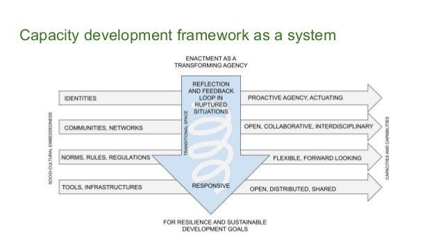 Capacity development framework as a system