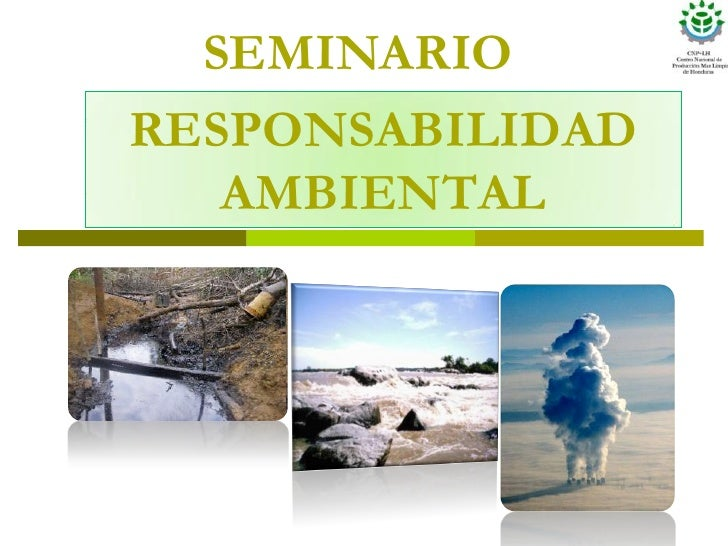 Responsabilidad ambiental fundahrse sept.08