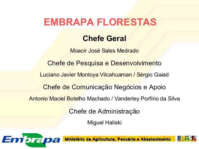 Ministério da Agricultura, Pecuária e AbastecimentoMinistério da Agricultura, Pecuária e AbastecimentoEMBRAPA FLORESTASChe...