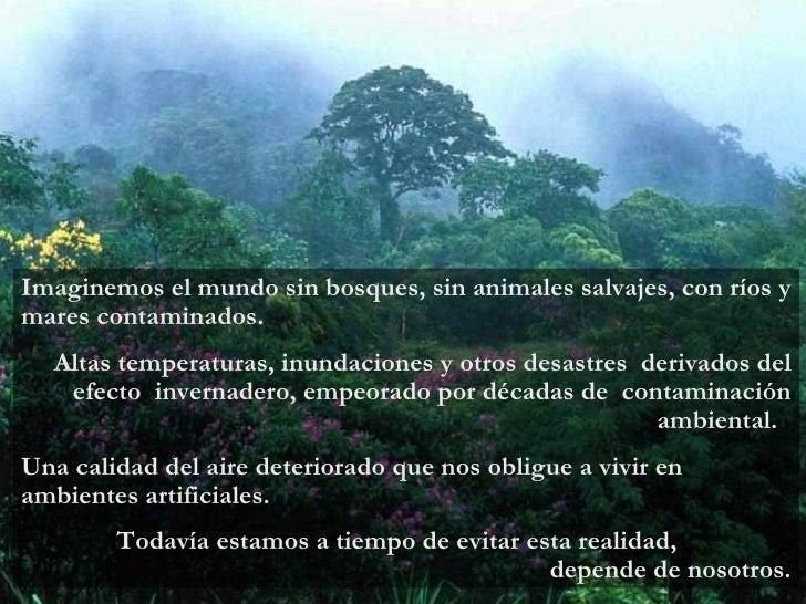 Imaginemos el mundo sin bosques, sin animales salvajes, con ríos y mares contaminados.  Altas temperaturas, inundaciones y...