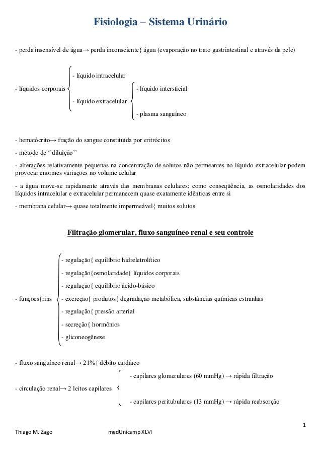 Fisiologia – Sistema Urinário- perda insensível de água→ perda inconsciente{ água (evaporação no trato gastrintestinal e a...