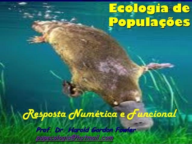 Ecologia de                       PopulaçõesResposta Numérica e Funcional  Prof. Dr. Harold Gordon Fowler  popecologia@hot...