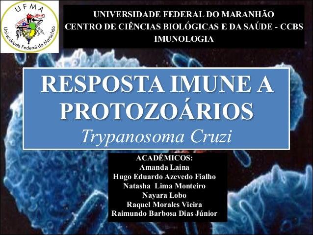 UNIVERSIDADE FEDERAL DO MARANHÃO CENTRO DE CIÊNCIAS BIOLÓGICAS E DA SAÚDE - CCBS IMUNOLOGIA  RESPOSTA IMUNE A PROTOZOÁRIOS...