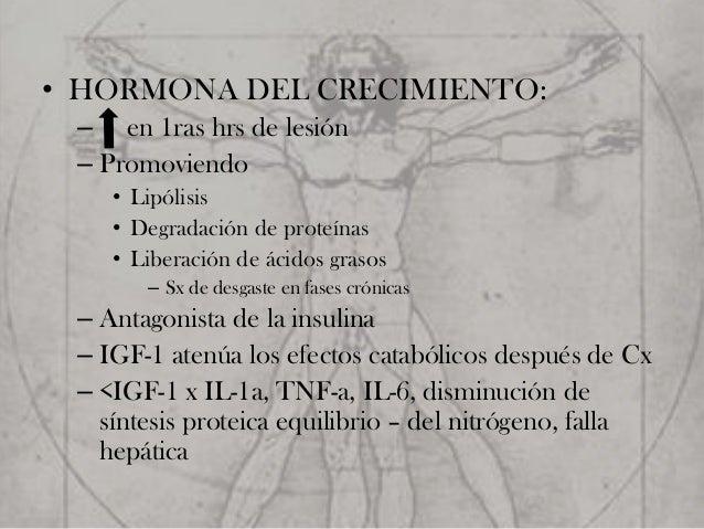 hormona anabolica igf-1