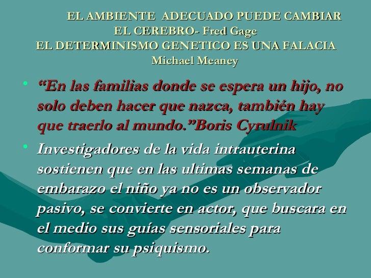 EL AMBIENTE  ADECUADO PUEDE CAMBIAR EL CEREBRO- Fred Gage EL DETERMINISMO GENETICO ES UNA FALACIA   Michael Meaney <ul><li...