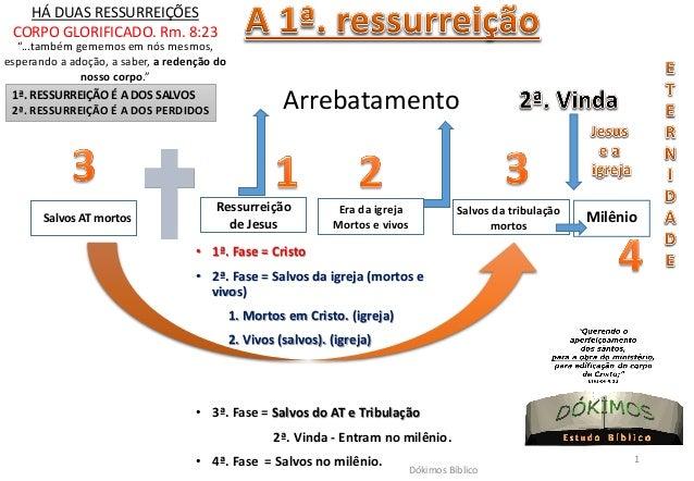 Salvos AT mortos  Era da igreja  Mortos e vivos  Ressurreição de Jesus  Arrebatamento  Salvos da tribulação  mortos  Milên...