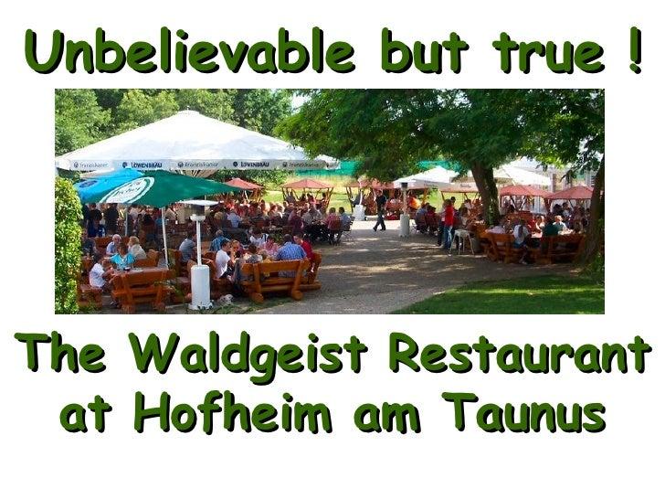 Unbelievable but true ! The Waldgeist Restaurant  at Hofheim am Taunus