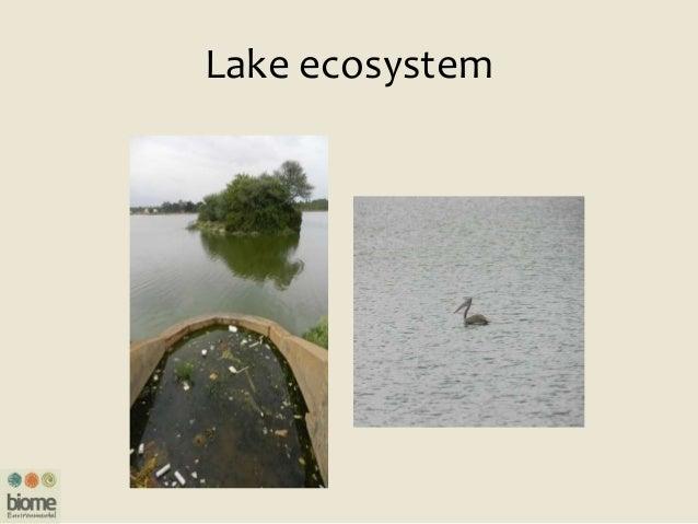 Resources www.bengaluru.urbanwaters.in