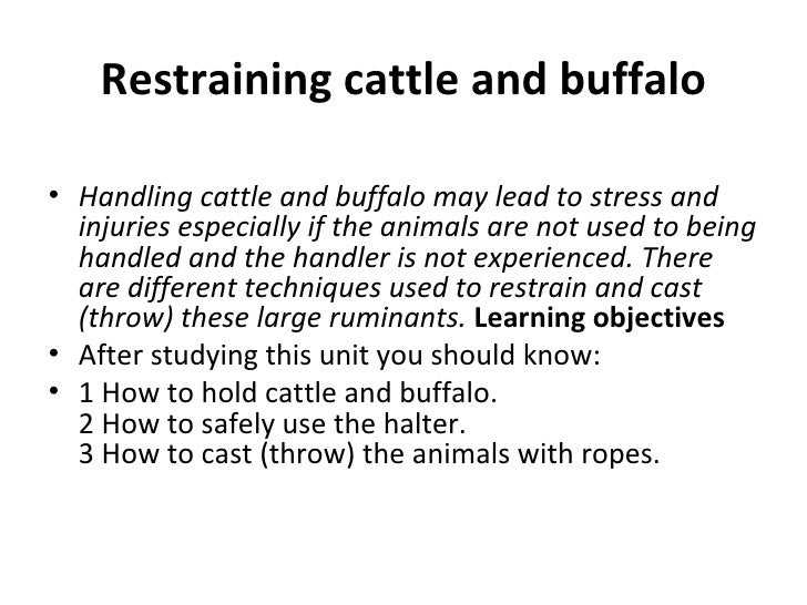 Restraining cattle and buffalo• Handling cattle and buffalo may lead to stress and  injuries especially if the animals are...