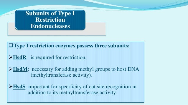 11 Type II Restriction Endonucleases