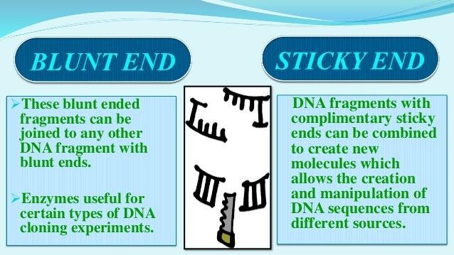 restriction endonucleases For details on neb's quality controls for restriction endonucleases, visit our restriction enzyme quality page all of neb's restriction enzymes have transitioned to a new buffer system visit nebcutsmartcom for further details.
