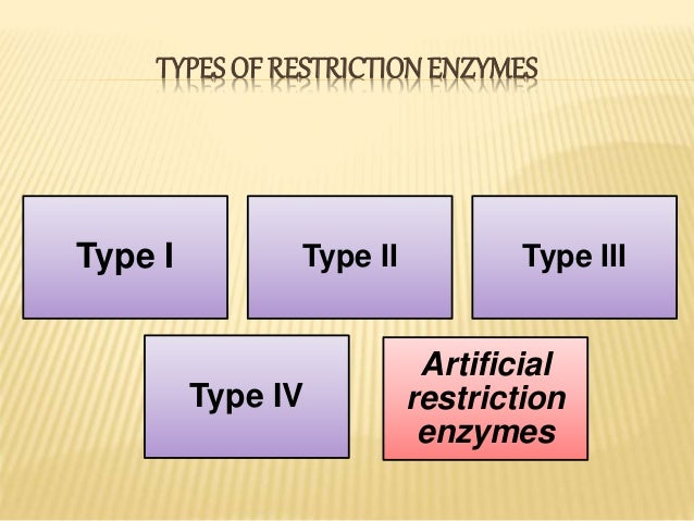 Restriction Enzymes Used In Nature