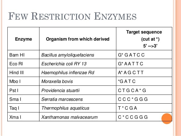 restriction enzymes d sirohi