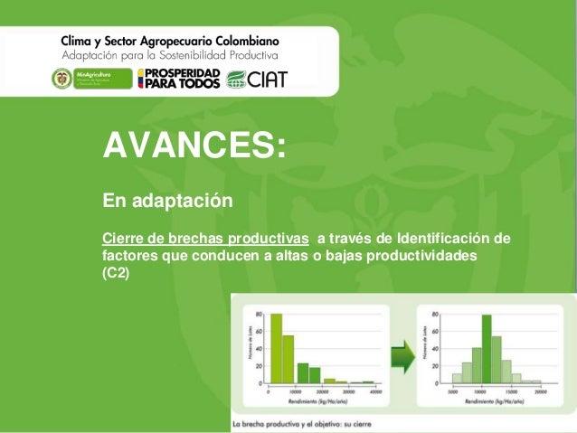 AVANCES: En adaptación Cierre de brechas productivas a través de Identificación de factores que conducen a altas o bajas p...