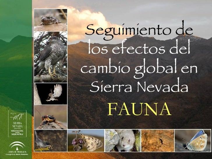 Seguimiento de  los efectos del cambio global en Sierra Nevada FAUNA
