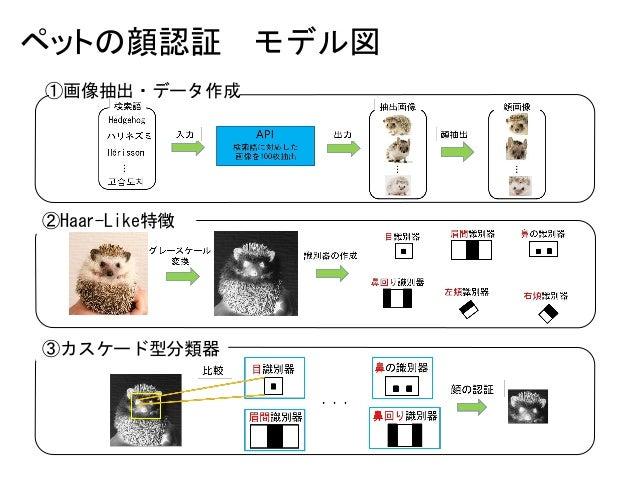 ペットの顔認証 モデル図 ③カスケード型分類器 ②Haar-Like特徴 ①画像抽出・データ作成