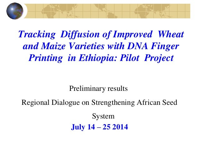 Tracking Diffusion of Improved Wheat and Maize Varieties with DNA Finger Printing in Ethiopia: Pilot Project Preliminary r...