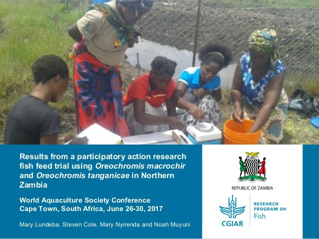 Results from a participatory action research fish feed trial using Oreochromis macrochir and Oreochromis tanganicae in Nor...