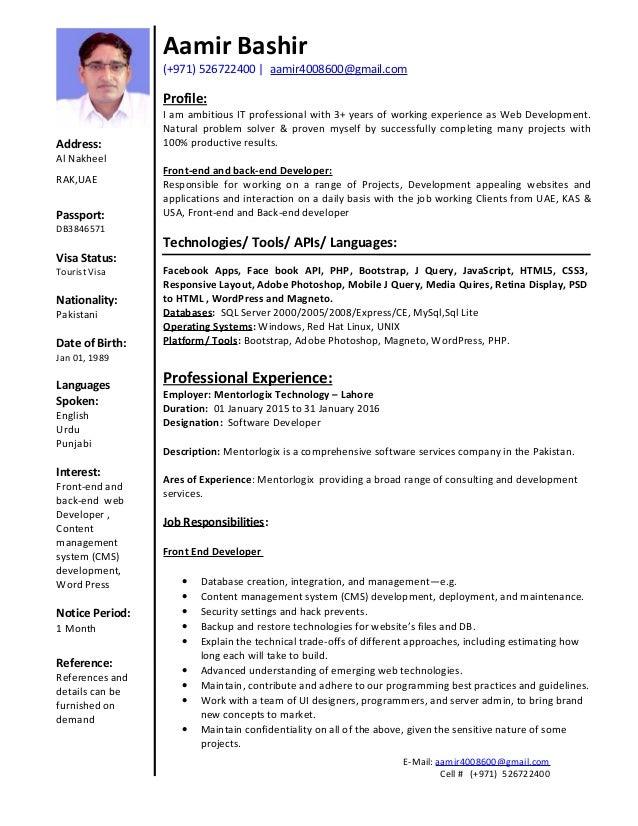 entry level web developer resume examples