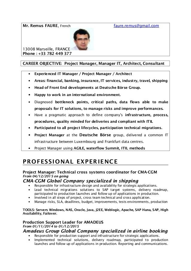 Project Management Objective Resume Lead Manager Template