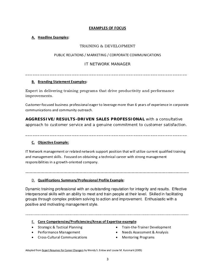 Cios Resume Focus Principle Cto Resume Samples Cto Cover Letter Getessay Biz  Career Focus For Resume