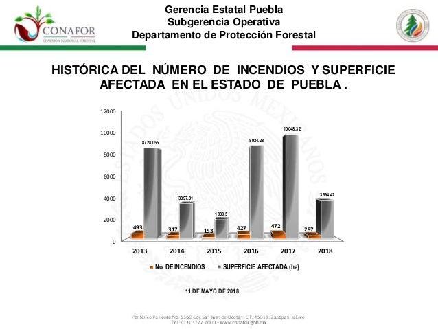 Gerencia Estatal Puebla Subgerencia Operativa Departamento de Protecci�n Forestal HIST�RICA DEL N�MERO DE INCENDIOS Y SUPE...