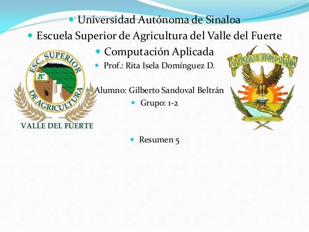  Universidad Autónoma de Sinaloa Escuela Superior de Agricultura del Valle del Fuerte               Computación Aplicad...