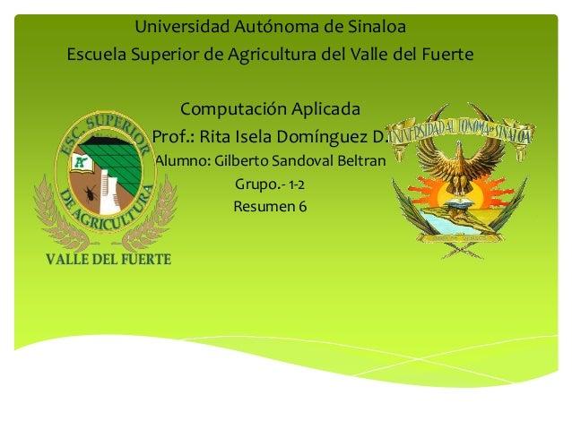 Universidad Autónoma de SinaloaEscuela Superior de Agricultura del Valle del Fuerte             Computación Aplicada      ...