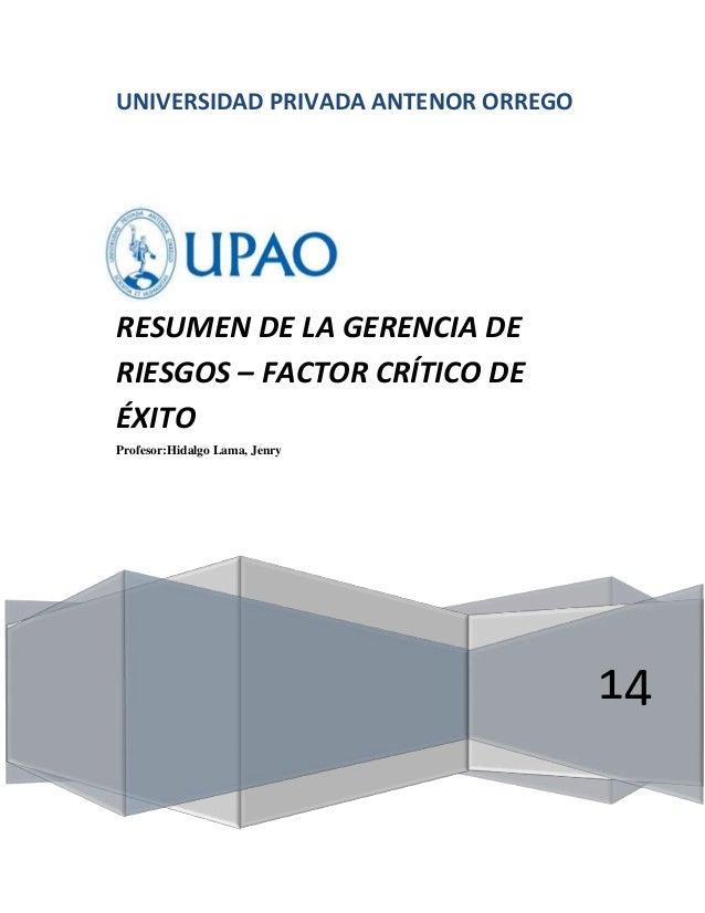 UNIVERSIDAD PRIVADA ANTENOR ORREGO 14 RESUMEN DE LA GERENCIA DE RIESGOS – FACTOR CRÍTICO DE ÉXITO Profesor:Hidalgo Lama, J...