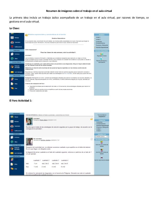 Resumen de imágenes sobre el trabajo en el aula virtual La primera idea incluía un trabajo áulico acompañado de un trabajo...