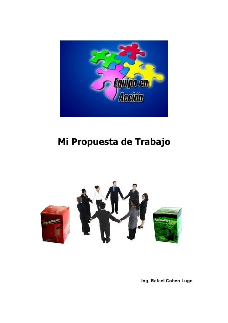 Mi Propuesta de Trabajo                      Ing. Rafael Cohen Lugo