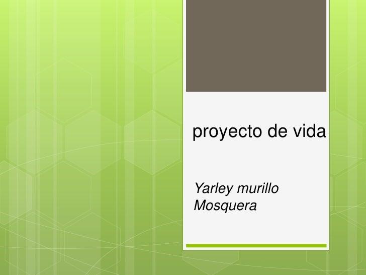 proyecto de vidaYarley murilloMosquera