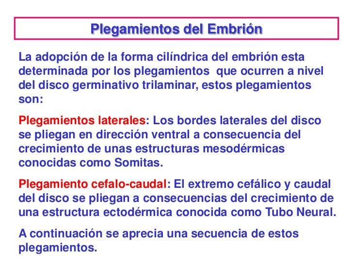 Plegamientos del EmbriónLa adopción de la forma cilíndrica del embrión estadeterminada por los plegamientos que ocurren a ...