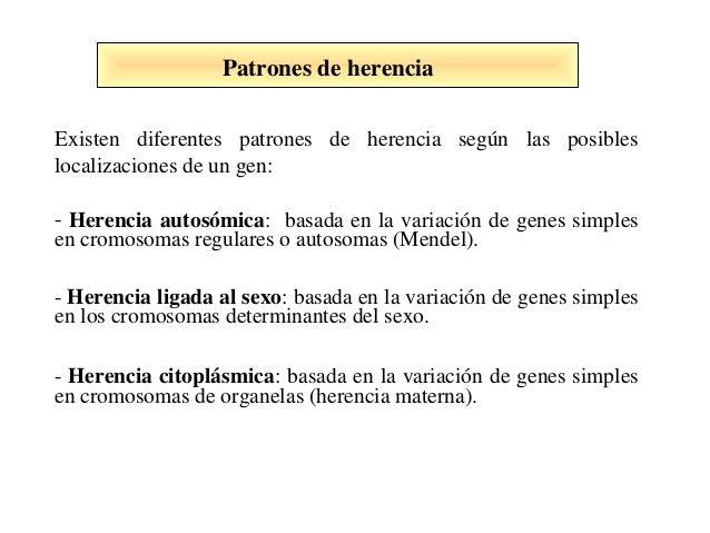 Existen diferentes patrones de herencia según las posibles localizaciones de un gen: - Herencia autosómica: basada en la v...