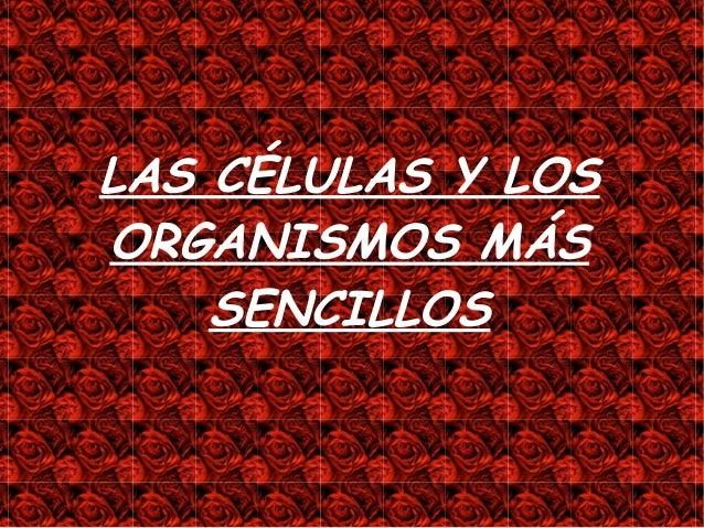 LAS CÉLULAS Y LOSORGANISMOS MÁS    SENCILLOS