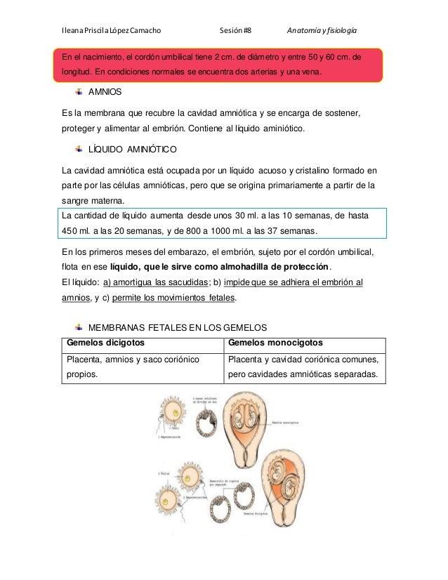 Resumen membranas fetales y placenta