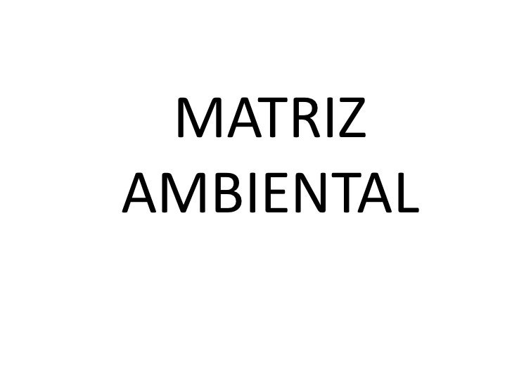 MATRIZ AMBIENTAL<br />